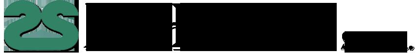 DUESSE SRL Retina Logo